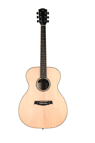 Guitare acoustique SGA100 Grand Auditorium